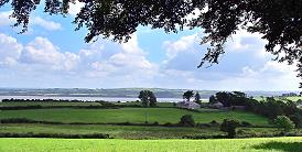 La vue sur le Shannon